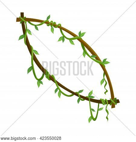 Tropical Liana Frame, Jungle Plant Branches With Leaves. Tropical Climbing Liana Vine With Green Lea