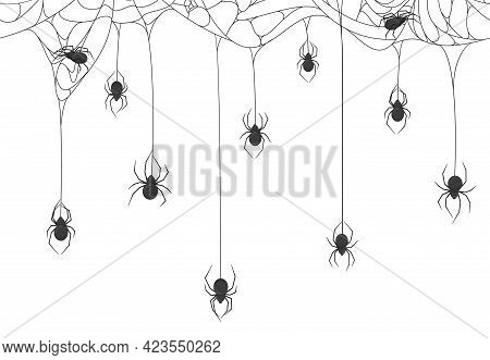Halloween Spiders Background. Black Spiders On Spooky Halloween Hanging Cobweb Vector Background Ill
