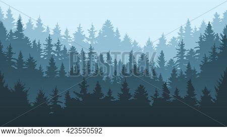 Pine Forest Landscape. Evergreen Spruce Tree Park View, Coniferous Forest Landscape Vector Backgroun