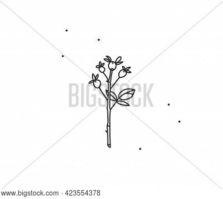 Hand Drawn Vector Abstract Stock Flat Graphic Illustration With Logo Element, Bohemian Magic Flower