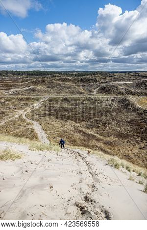 Dune Nature Reserve, A Woman Going Down A Hill Among White Sand, Grass, Dry Heather And Trees In The