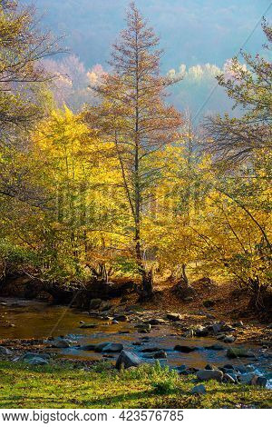 Autumnal Nature Scenery With River. Trees In Colorful Foliage On The Grassy Shore. Beautiful Landsca
