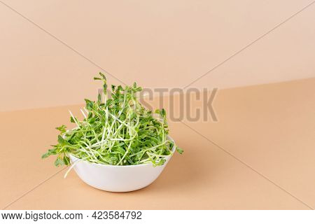 Bowl With Peas Microgreens On Modern Color Background. Sprouted Seeds. Healthy Eating Sprouts.