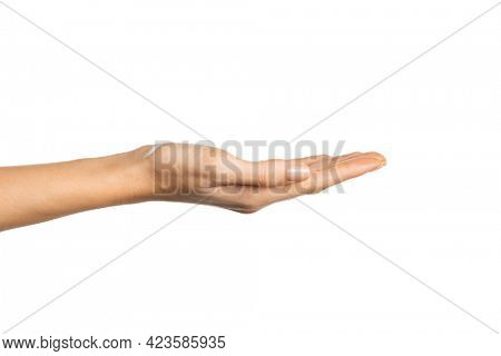 Side view of beautiful woman hand isolated on white background showing something. Empty open female and gentle hand on white background. Close up of beauty woman hand with palm faced upwards.