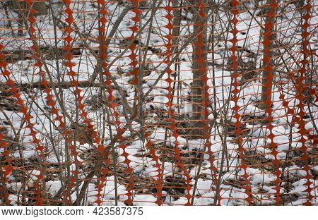 Plastic Safety Net For Construction Site. Texture Background Of Net. Construction Grid