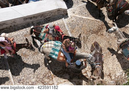 Aerial Shot Of A Family With Mule Taxi In Santorini, Greece . Taxi Donkeys Carry Tourists