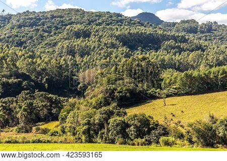 Forest And Farm Field Views Over Mountains, Pinhal Alto, Nova Petropolis, Rio Grande Do Sul, Brazil