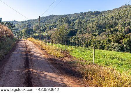 Farm Road With Field And Forest, Pnhal Alto, Nova Petropolis, Rio Grande Do Sul, Brazil