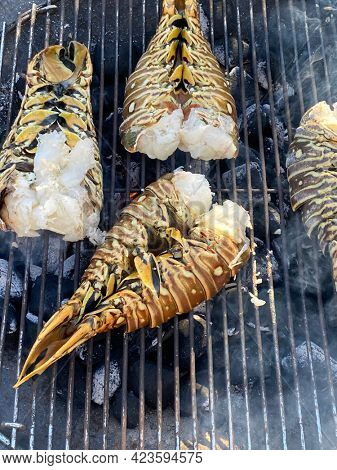 Spiny lobsters cooked and grilled on a barbecue grill in a garden