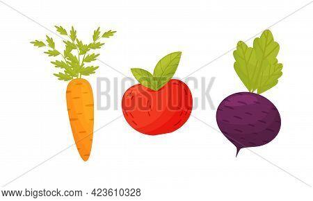 Ripe Vegetables As Seasonal Harvesting And Yield Vector Set