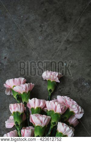 Pink floral carnation wallpaper design