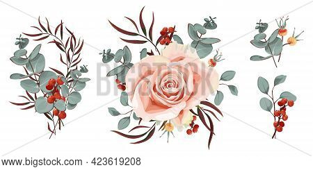 Set Of Vector Floral Bouquets. Powdery Rose, Eucalyptus, Branch Of Red Berries And Rose Hips. Weddin