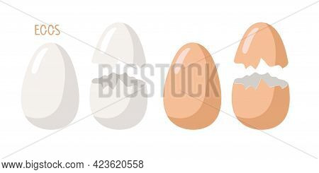 Set Of White And Brown Eggs. Whole And Broken Eggs With Cracked Eggshell. Vector Food Ingredient Iso