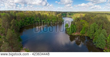 Scenic Forest Lake With Shores Overgrown With Tall Pines Among The Deciduous Trees And Shrubs In Spr