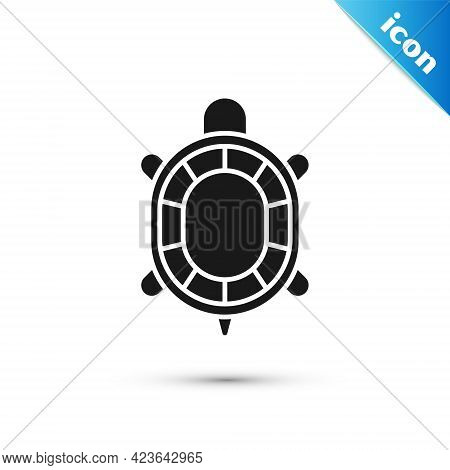 Grey Turtle Icon Isolated On White Background. Vector