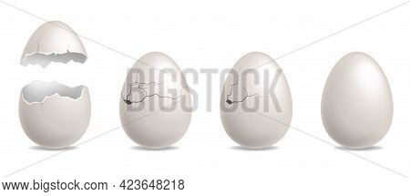 Cracked Egg. Realistic Chicken While Eggshells. Hatching Sequence Steps Row. Birth Of Bird. 3d Broke
