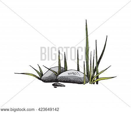 Heap Of Stones, Big Heavy Boulders With Grass A Color Sketch Vector Illustration