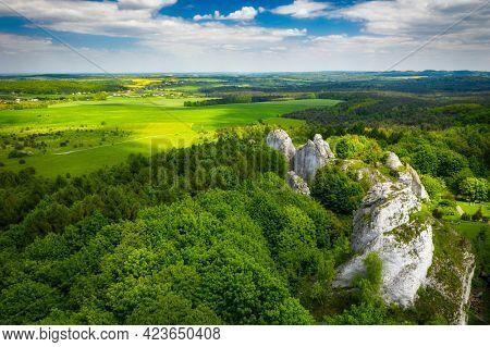 Beautiful landscape of the Polish Jurassic Highland at summer, Poland