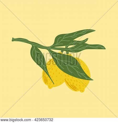 Vector Illustration Of Citrus Fruits On A Branch With Leaves. Lemon Poster. Cute Citrus Fruits For T