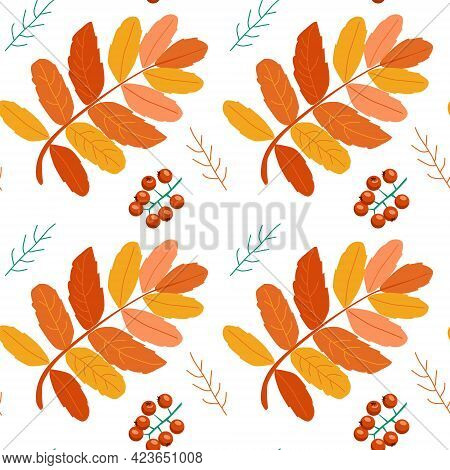 Seamless Pattern Of Mountain Ash Twigs Leaves And Berries. Modern Patterns For Fabrics
