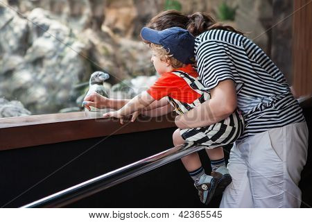 Young Mother And Toddler Boy In Zoo