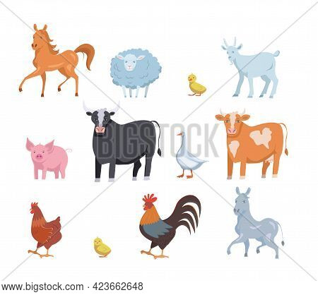 Set Of Cute Farm Domestic Animals And Birds Isolated On White Transparent Background. Vector Flat De