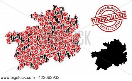 Mosaic Map Of Guizhou Province Organized From Flu Virus Elements And Population Elements. Tuberculos