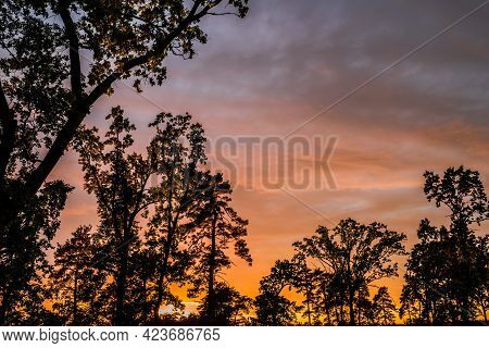 Evening Landscape With Clouds Illuminated By The Setting Sun. Majestic Sunset In The Oak Forest.
