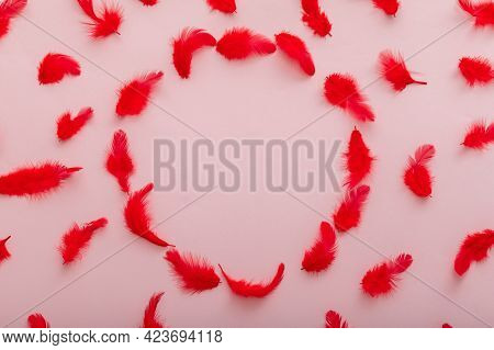 Red Feathers Pattern On Pink Color Background. Frame Made Of Soft Bird Feather Pattern In Circle Sha