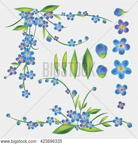Blue Flowers Vector Set. Blue Forget Me Not Spring Flowers In Bouquet For Wedding. Decorative Elemen