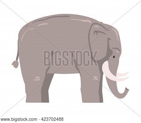 Cute Elephant African Animal, Wild Herbivore Jungle Animal Cartoon Vector Illustration