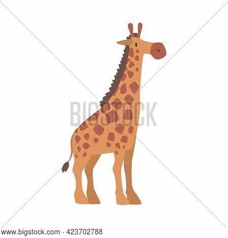 Cute Giraffe African Animal, Wild Herbivore Savannah Animal Cartoon Vector Illustration