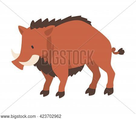 Warthog African Animal, Wild Herbivore Jungle Animal Cartoon Vector Illustration