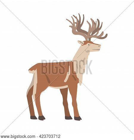 Reindeer Arctic Animal, Wild Polar Mammal Cartoon Vector Illustration