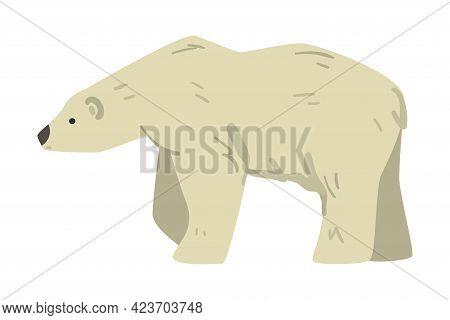 White Bear Arctic Animal, Wild Polar Mammal Cartoon Vector Illustration
