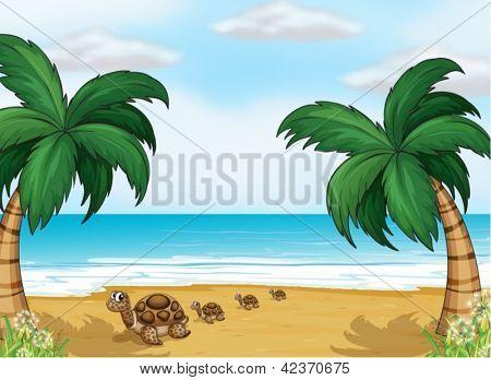 Illustration of turtles at the seashore
