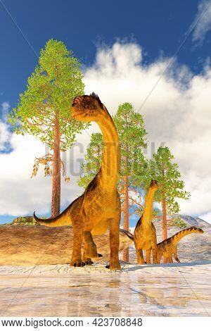 Camarasaurus Dinosaur Herd 3d Illustration - A Herd Of Camarasaurus Dinosaurs Search For Vegetation