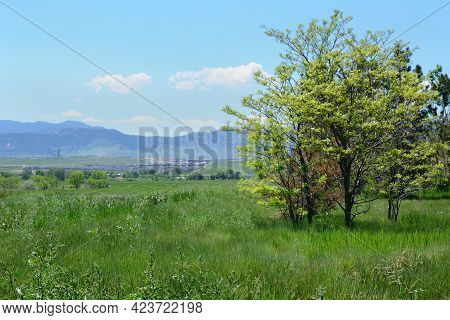 Springtime Colorado Landscape From Standley Lake Regional Park In Westminster Looking Towards The We