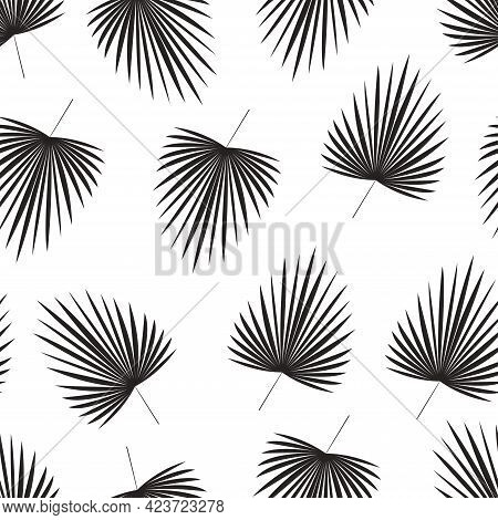 Palm Leaves Monochrome Vector Illustration In Flat Design Black Silhouette Of Tropical Lush Foliage