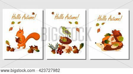 Set Of Autumn Card With Hedgehog, Squirrel And Bird. Acorns, Mushrooms, Autumn Leaves And Animals In