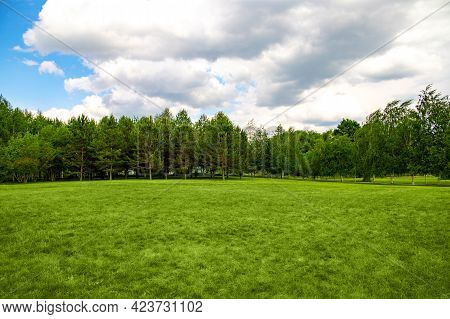 Landscape Of Fresh Lawn, Forest And Cloudy Sky Background, Copy Space.