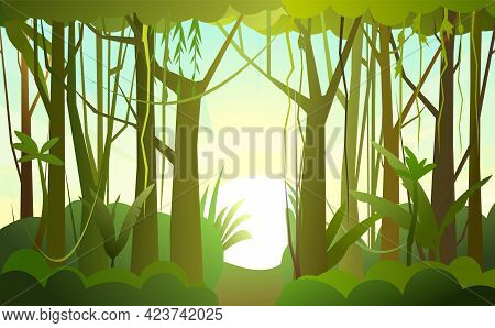 Jungle Illustration. Sunrise. Dense Wild-growing Tropical Plants With Tall, Branched Trunks. Rainfor
