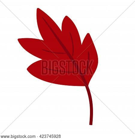 Red Leaf Isolated On White Background. Vector Illustration