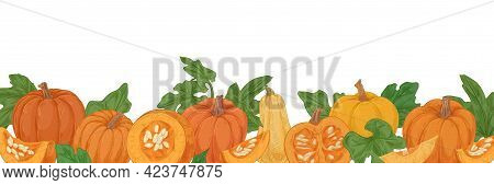 Autumn Hand-drawn Border With Pumpkins, Gourds And Leaves. Fall Orange Vegetables. Banner With Fresh