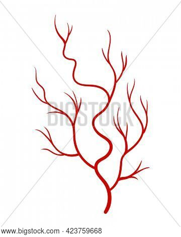 Human veins. Red silhouette vessel, arteries or capillaries on white background. Concept anatomy element for medical science. isolated symbol of blood system