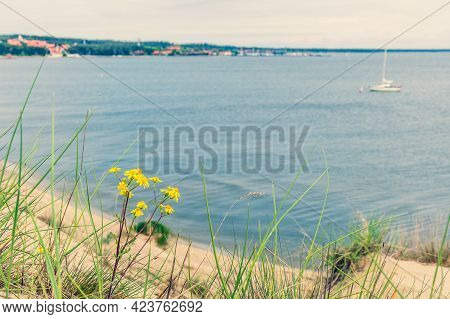 Panoramic View From Sand Dunes In Nida, Klaipeda, Lithuania, Europe. Curonian Spit And Curonian Lago
