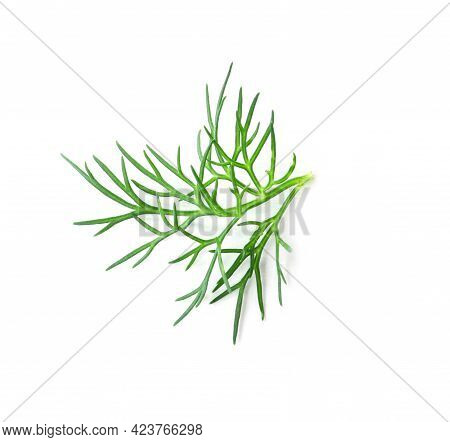 Sprig Of Fresh Dill Isolated On White, Top View
