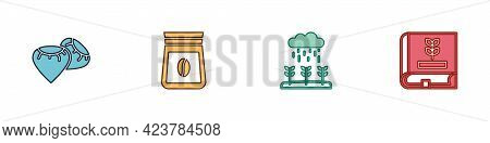 Set Seed, Bag Of Coffee Beans, Plant Sprouts Grow In The Rain And Book About Seeds Icon. Vector