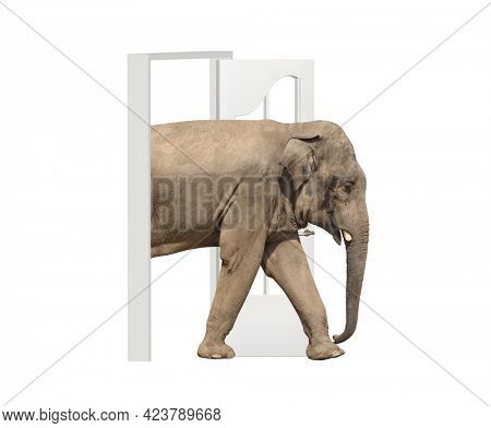 Elephant enters in open door. Opportunities, nature and ecology concepts. Elephant walking through doorway. Isolated on white background. 3d render