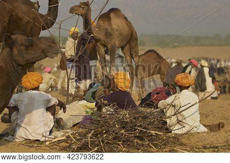 Pushkar, Rajasthan, India - November 6, 2008: Scene At Annual Pushkar Fair In Rajasthan, India